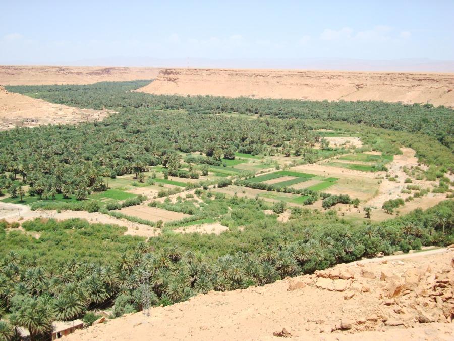 Vacanza Marocco oasi Ziz